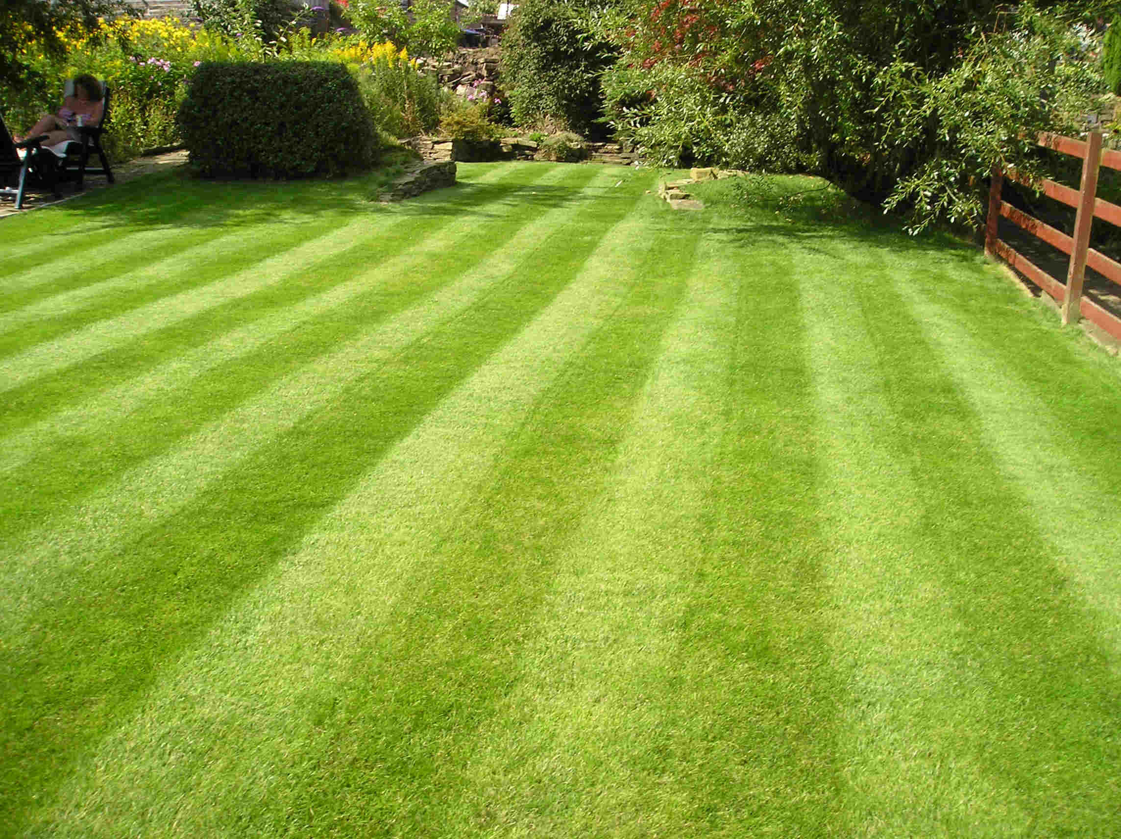 lawn-picture-2.jpg